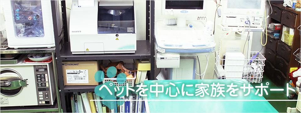 桃山犬猫病院
